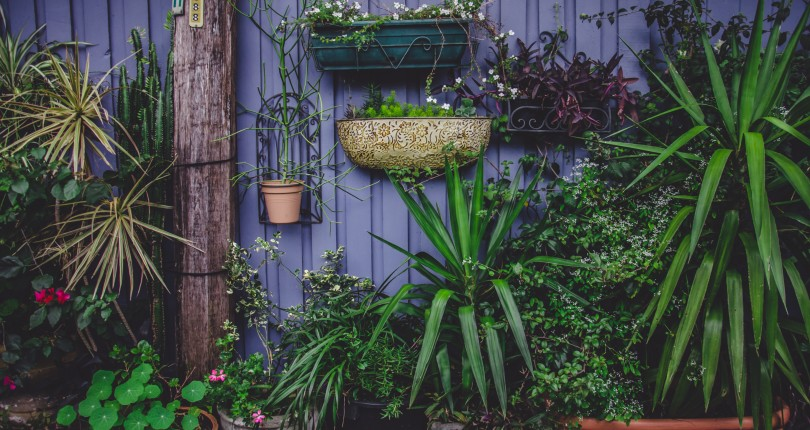 Affordable Ideas to Decorate Your Garden