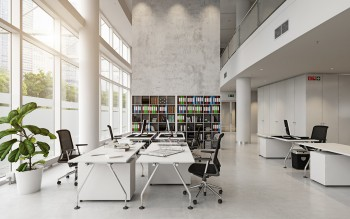Office Design Ideas & Trends