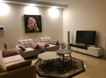 fully furnished apartment for rent in Zafaraniyeh Tehran