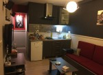 fully furnished for renting in Mirdamad Tehran